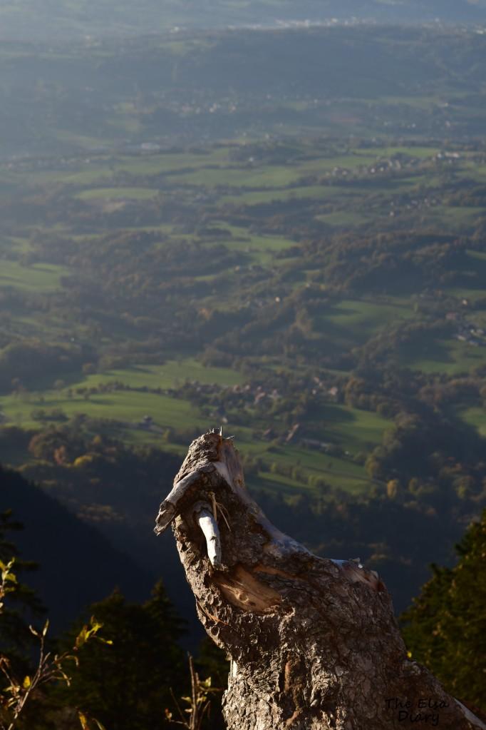 nature suisse et hs (10)